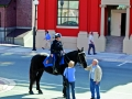 royal-newfoundland-constabulary-mounted-officer-st-johns-nl-c-barrett-mackay-photo-courtesy-nl-tourism